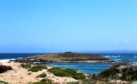 Naturalistic Tourism Alea Ambiente